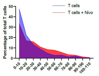 Line graph showing the percentage of total T cells with and without Nivolumab treatment